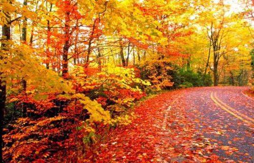Colorful Autumn Karakoram & Hindukush